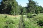 Маневицька вузькоколійна залізниця